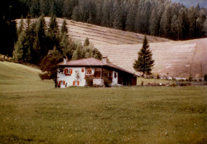 B-Bacini 1985